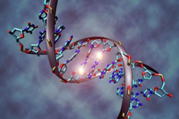 Гены аутизма могут отвечать за более высокий уровень умственного развития