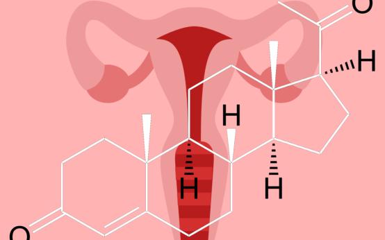 Прогестерон у женщин: норма, причины и последствия изменения уровня гормона