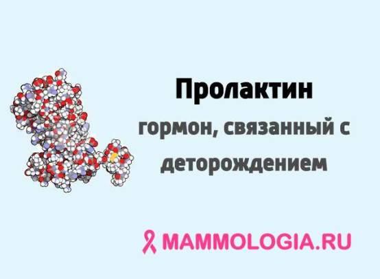 Что такое и за что отвечает гормон пролактин у женщин