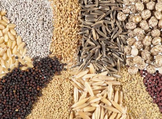 Польза и вред семечек тыквы, дыни, арбуза, подсолнуха, льна для женщин