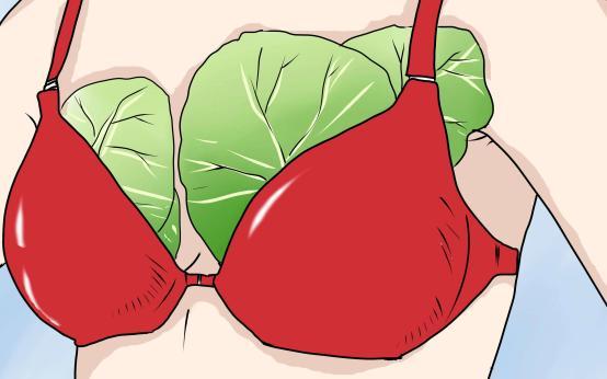 Как можно применять капустный лист при болезнях груди
