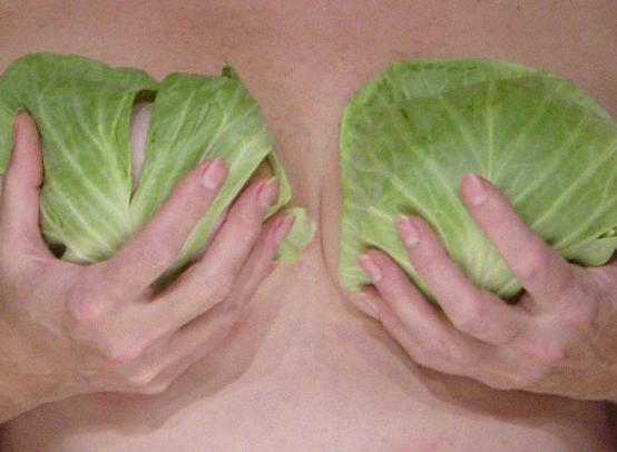 Народные средства лечения фиброаденомы молочной железы