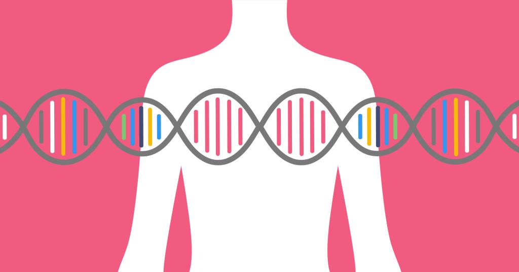 Гены рака молочной железы BRCA2 и BRCA1