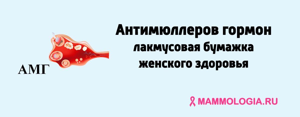 Антимюллеров гормон у женщин