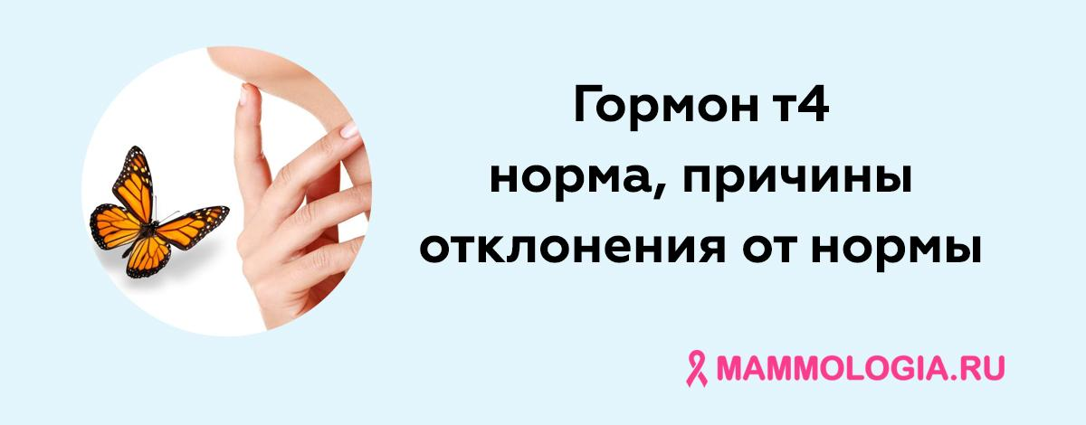 Гормон т4 у женщин: норма, причины отклонения от нормы