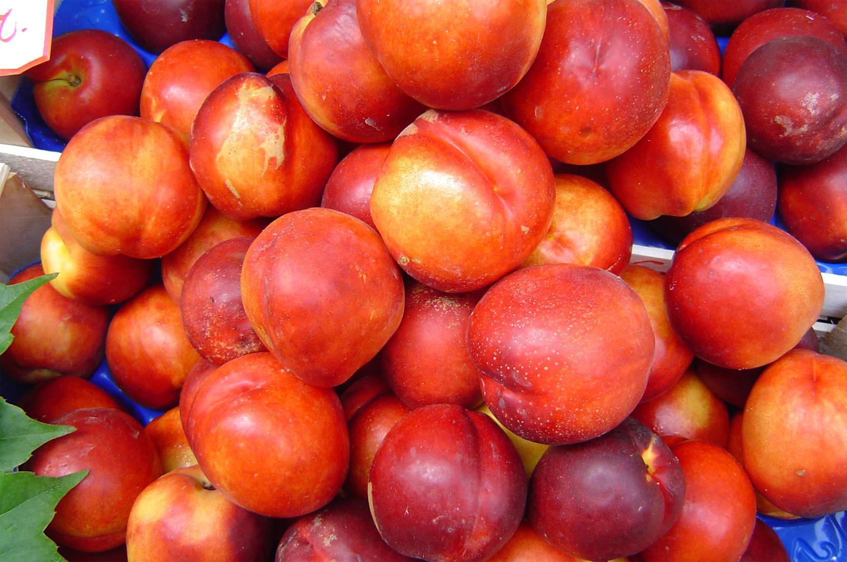 Нектарины – 9 полезных для здоровья свойств