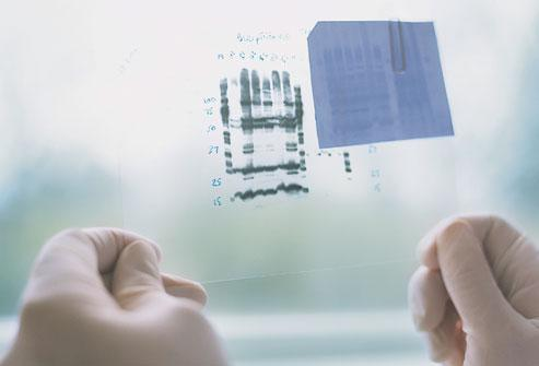 Гены рака молочной железы
